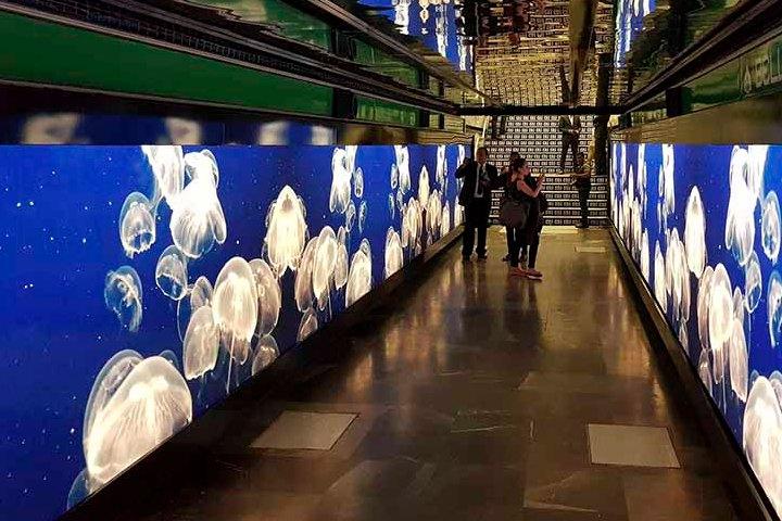Exposición digital en el Metro de la CDMX. Foto: Dónde Ir