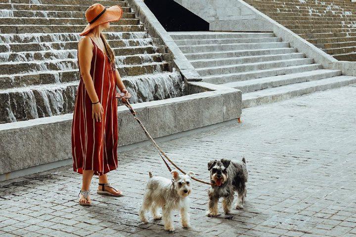 Conoce estos sitios pet friendly del Caribe Mexicano. Foto: Turismo Caribe Mexicano