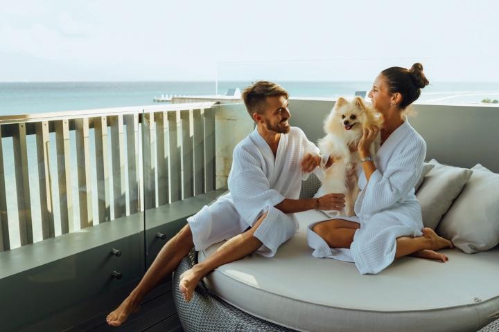 Hospedarte en los hoteles pet friendly del Caribe Mexicano. Foto: Turismo Caribe Mexicano