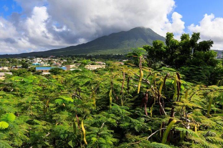 Las vistas de la Isla Nieves del Mar Caribe las recordarás por siempre. Foto: Civitatis