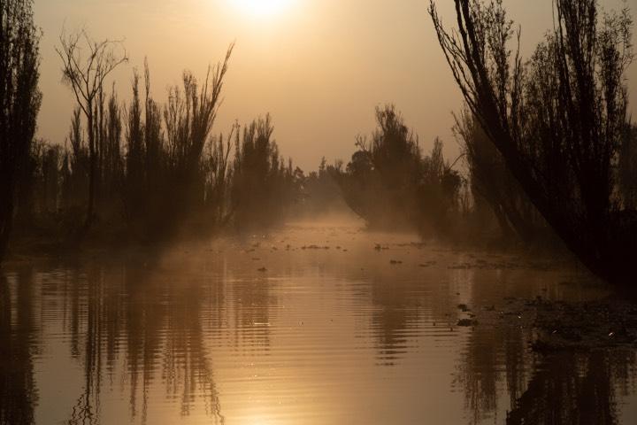 La belleza de Xochimilco se puede esconder bajo la neblina. Foto: Four Seasons