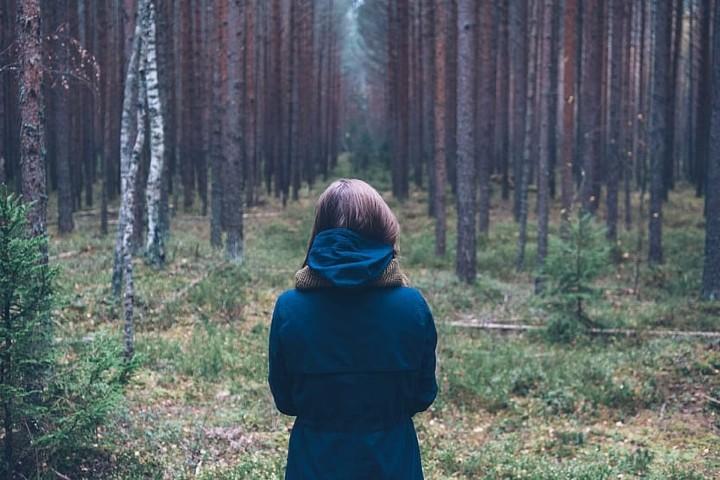 Mujer en el bosque. Foto: Pxfuel