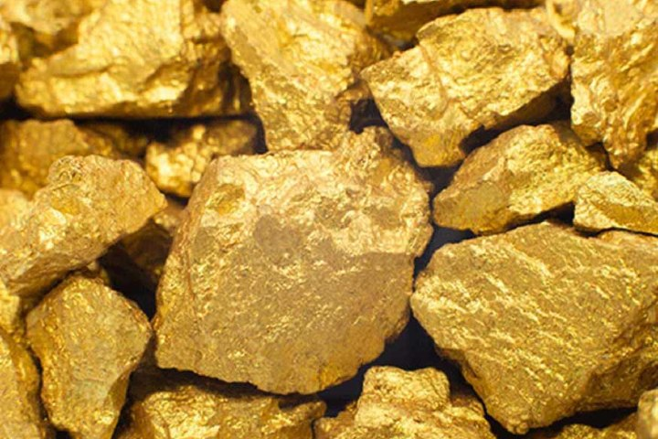 Oro extraído de las minas. Foto: Diario Petrolero