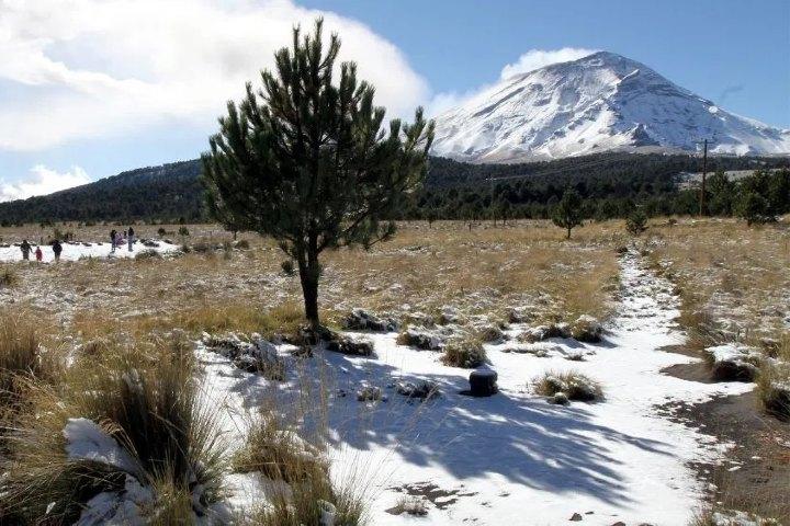 Parque Nacional Izta-Popo, Puebla. Foto: Sitio Web