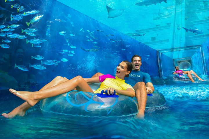 Podrás admirar a los animales marinos mientras te deslizas por el tobogán. Foto: Sitio Web
