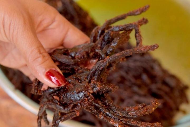 Tarántula frita de Camboya. Foto: La Bocina