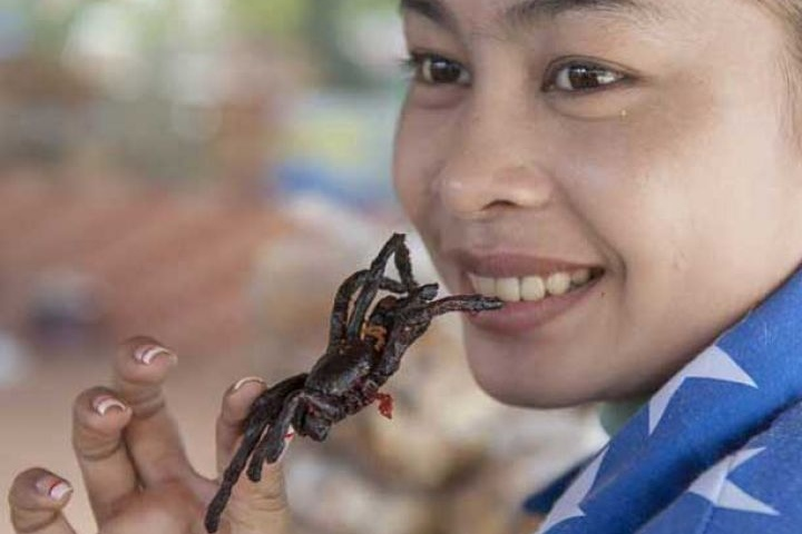 Comienza a comerla desde las patas, es la mejor opción. Foto: Hit Paredes