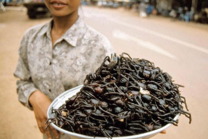 ¿Te atreves a probar la tarántula? Foto: Pinterest