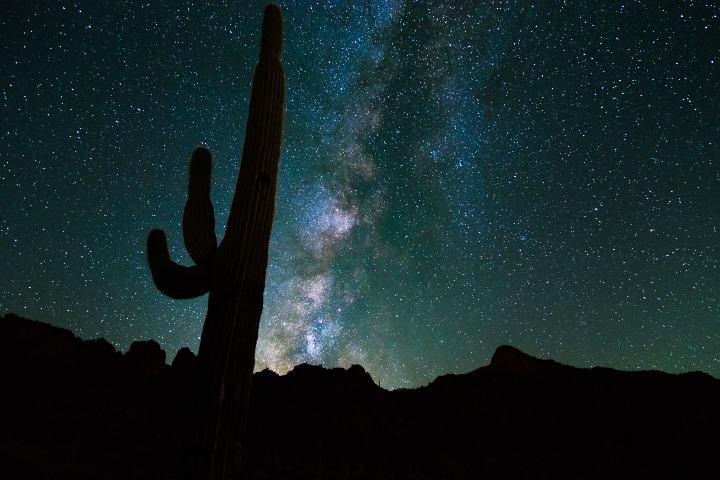Paisaje desértico en Arizona. Foto Turismo Arizona
