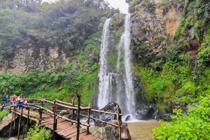 Sierra Norte de Puebla. Foto: Atreyo T