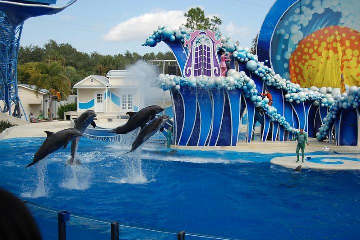 Sean todos bienvenidos a SeaWorld. Foto por Michelle B.
