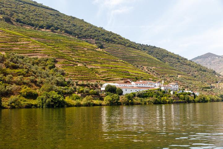 Valle-del-Douro-