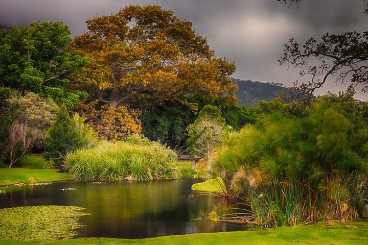 Para muchos, el jardín más hermoso de África. Foto por Delyth A.